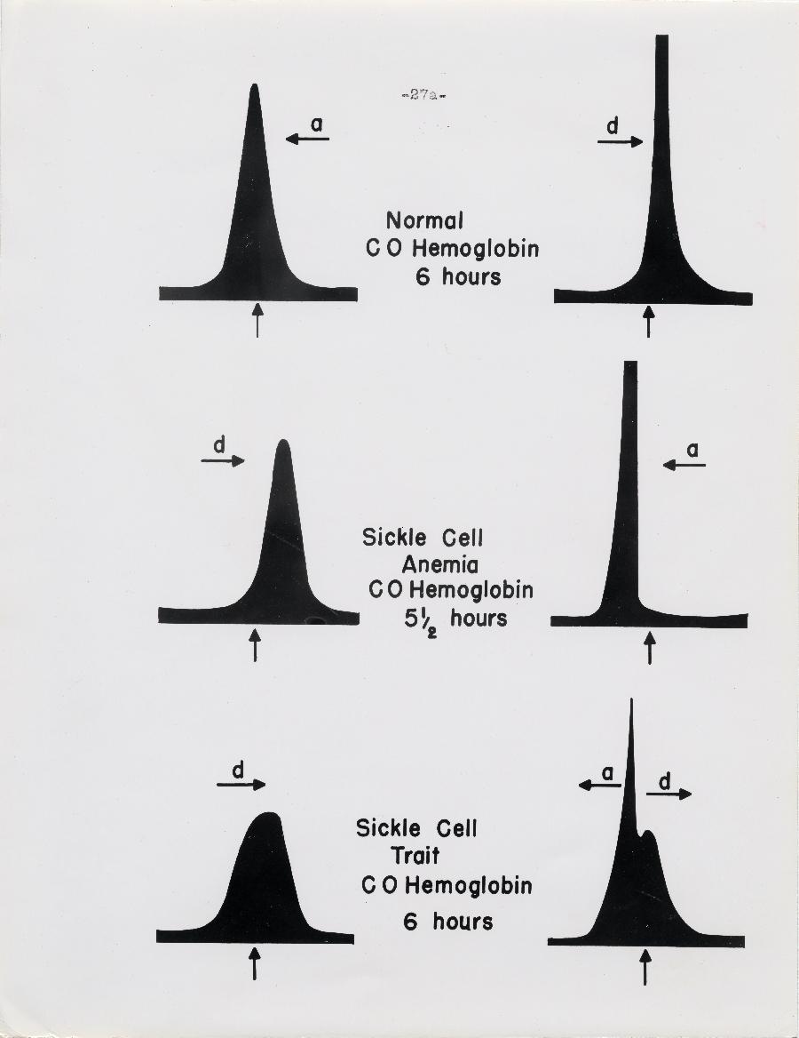 Figure - Page 27a