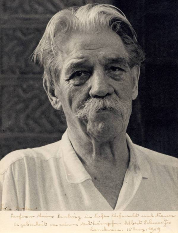 albert schweitzer research paper The albert schweitzer foundation their research has been referenced by politicians, authors, and other organizations 9 have programs led to change for animals.