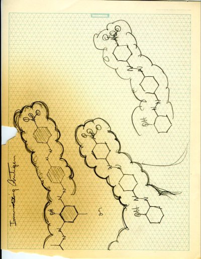 """The Serological Properties of Simple Substances. IX. Hapten Inhibition by Polyhaptenic Simple Substances."" Page 1. 1945"