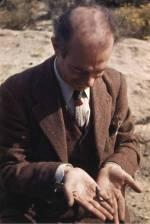 Linus Pauling examining a small lizard.