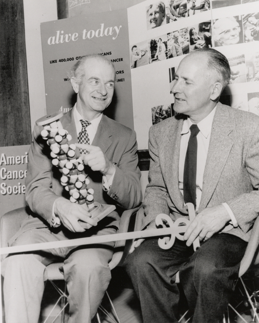 Linus Pauling, holding a model of the alpha-helix, seated next to George Beadle.