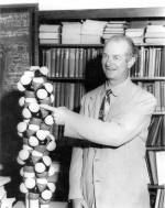 Linus Pauling gesturing toward a model of the alpha-helix.