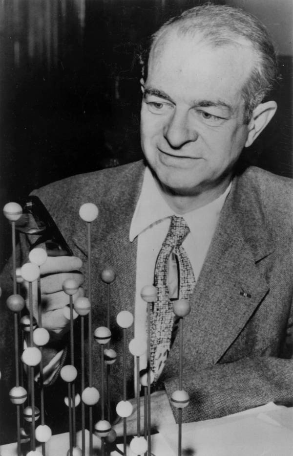 Linus Pauling examining a molecular model a few days prior to being awarded the Nobel Prize for Chemistry.