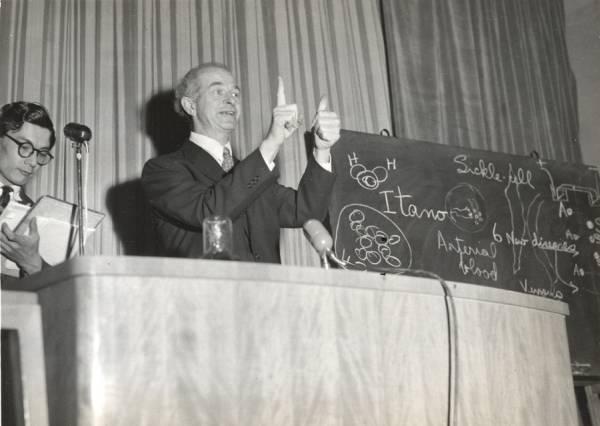 Linus Pauling lecturing on hemoglobin. Tokyo, Japan.
