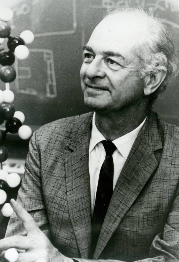 Linus Pauling with a chemical model.
