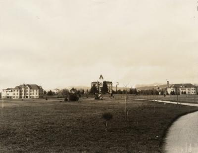 <p>View of the OAC campus, with Agriculture Hall (now Education Hall) on the left, the Administration Building (now Benton Hall) in the middle and Mechanical Hall (now Apperson Hall) to the right. Photo taken Spring 1907 soon</p><p>				after the <span class='highlight1 bold'>American</span> Elm trees had been planted along the pathways.</p>