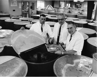 Studying fish, 1969. Pictured from left to right: Donald J. Lee, Joseph Wales, and Russel O. Sinnhuber from the Food Science Department.