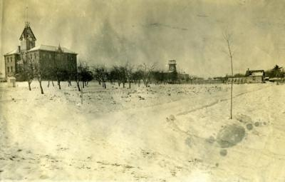 OAC orchard in snow with Benton Hall in the background, ca. 1895.
