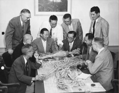 <p>Touring Japanese agriculturalists viewing wheat varieties under development at OSC, 1956. From left: seated: Wanihiko Hasegawa, managing director, Nippon Flour Milling Co.; Akio Maru, executive director, Nishin Flour</p><p>				Milling Co.; Buichi Oishi, vice minister of agriculture and forestry; Nobuo Kuwahara, chief, 2nd operation division food ministry; Ryoichi Sugama, Oregon Wheat Growers league assistant in Japan; and Dr. D. D. Hill, head of</p><p>				Farm Crops at Oregon State College. Standing (left) F. E. Price, dean and director of agriculture, OSC; Wilson Foote, research agronomist, OSC; Dick Baum, Oregon Wheat Growers league; and Jack Ross, extension farm crops</p><p>				specialist, OSC.</p>