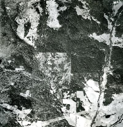 A sample of the McDonald Forest Aerial Photographs collection.