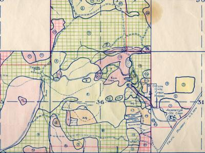 McDonald Forest and Peavy Arboretum Type Map, 1940.