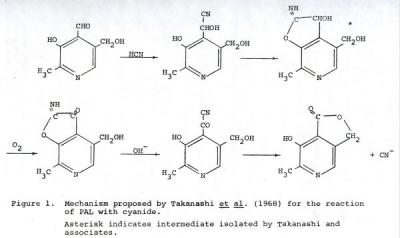 "Figure 1 from Martha Ann Hammond's master's thesis titled ""Determination of Vitamin B6 Compounds in Human Blood by the Cyanide Method,"" December 3, 1969."
