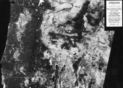 Mosaic satellite image of Oregon, 1974.