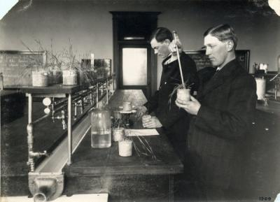 Students testing soil fertility and plant growth under various soil conditions, ca. 1900s.