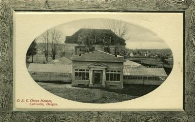 "Postcard of the OAC greenhouses annotated ""to the left of Ag Bld,"" ca early 1900s."