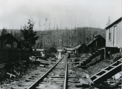 Unidentified railroad line, perhaps running through the Oregon Coast Mountain Range, ca 1910s.