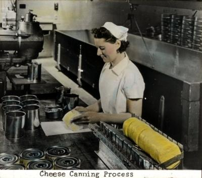 Hand colored photograph of the cheese canning process, ca 1930s.
