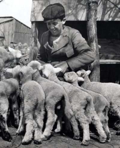 "An unidentified individual with ""orphan lambs,"" ca 1920s."