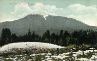 Marys Peak near Corvallis, Oregon, hand colored postcard, circa 1910s.