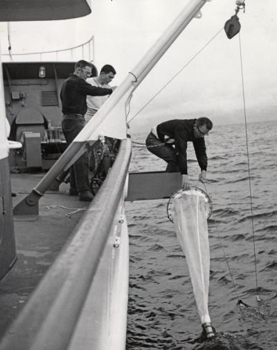 Bruce Wyatt, Lyle Hubbard and an unidentified man on the deck of a ship, 1965. Bruce Wyatt was a faculty member in the Oceanography Department. The department was officially established July 1, 1959 with Wyatt acting as support staff.