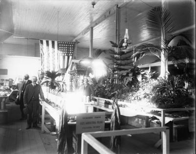 "Two men posing at a plant and vegetable exhibit labeled ""Exhibit from State Agricultural College, Corvallis, Oregon. Believed to be in Portland, 1905 or Seattle, 1909."