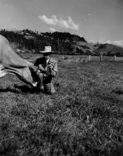 Arnold Ebert of KOAC interviewing a cow, September 1950. Proving that anybody or anything can talk with Arnold Ebert on KOAC, he is caught in the act while interviewing a cow on the Ralph Cope farm near Langlois. He was the radio farm director for KOAC.