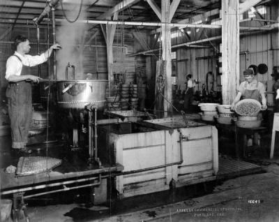 The cooking and washing department of the Starr Fruit Products Company in Portland, Oregon, ca. 1930s.