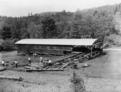 School of Forestry sawmill, 1950.