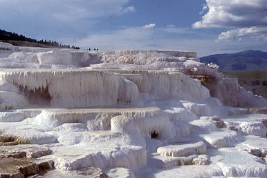 Mammoth Hot Springs, Yellowstone National Park, 1954