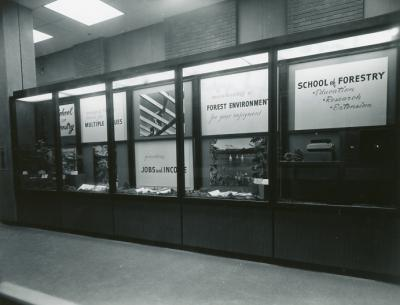 School of Forestry display mounted in the Administration Building, 1972.