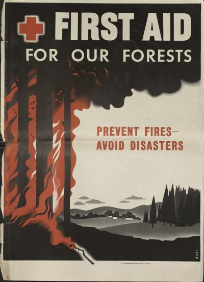 First Aid for Our Forests