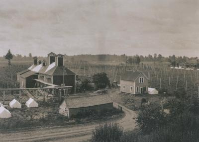 Zoller Hop Company farm in Independence, Oregon, circa 1910.