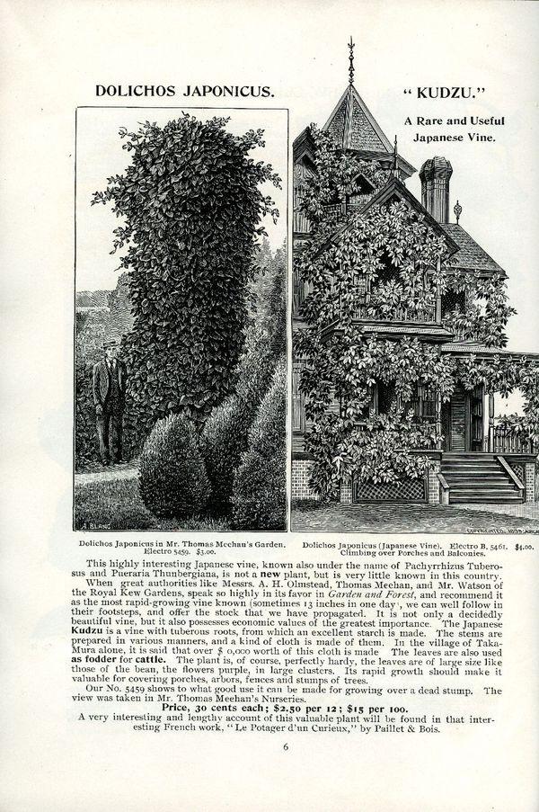 1895.001-006.jpg