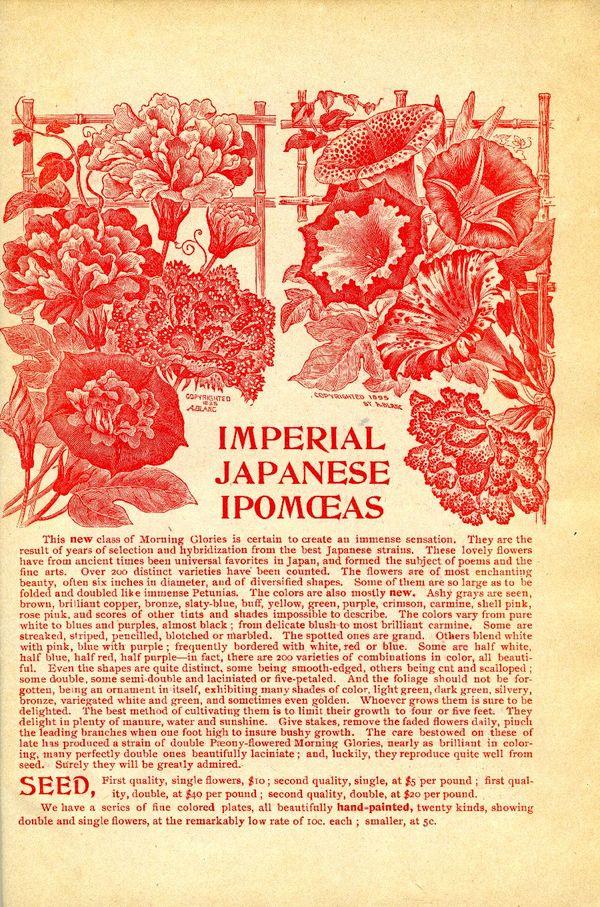 1895.001-insidebackcover.jpg
