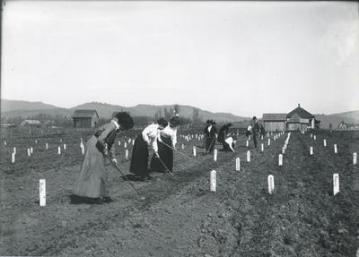 women-gardening.jpg