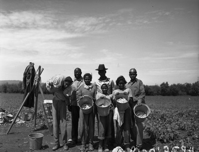 p120_2594_african_american_group_in_bean_field_d2304739b4.tif