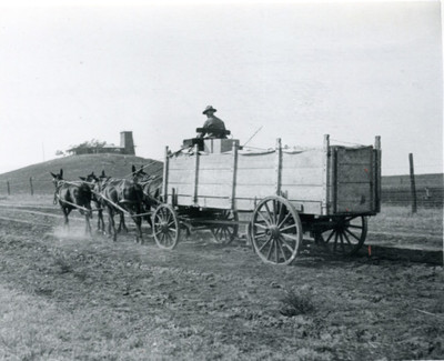 Hauling fruit to the railroad, 1910