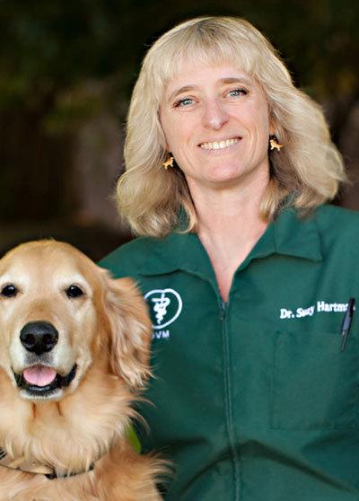Suzy Hartman Oral History Interview