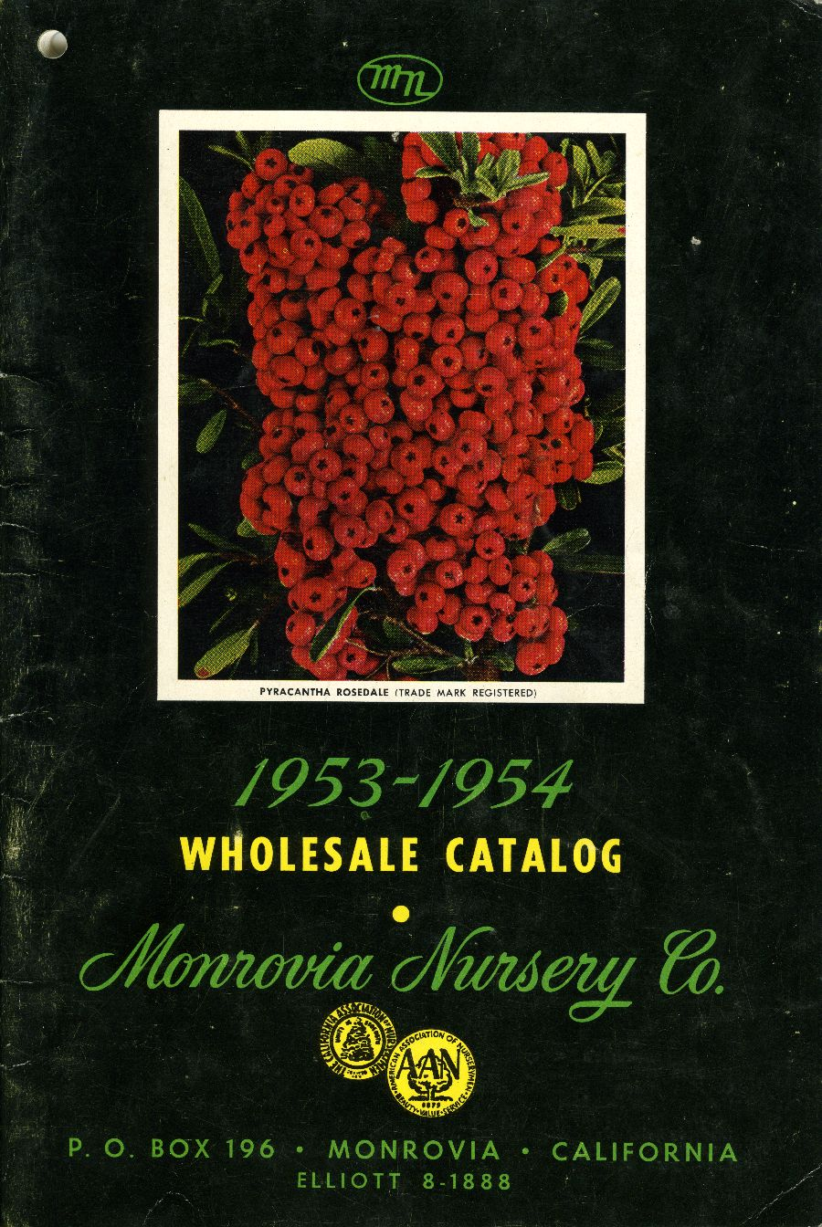 Monrovia Nursery Co Whole Catalog 1953