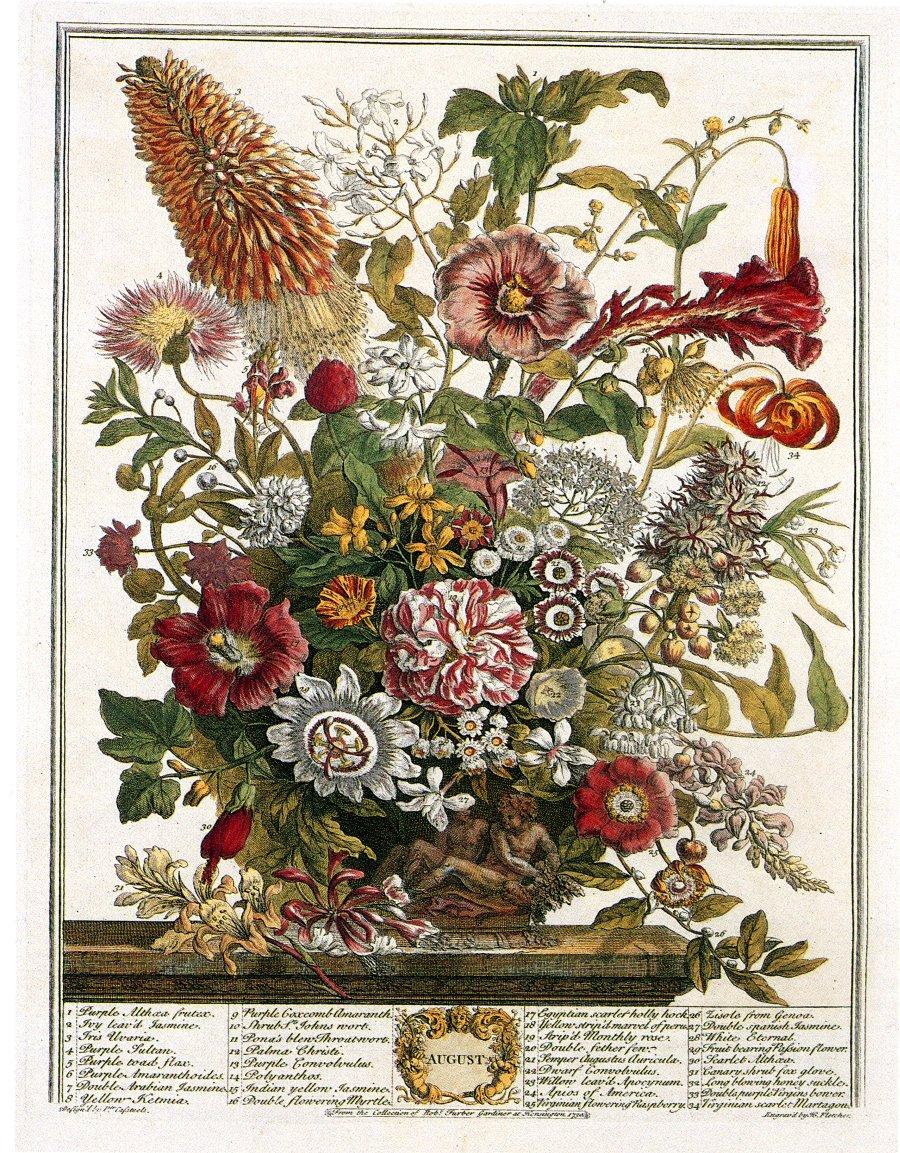 El primer catálogo de semillas británico de la historia