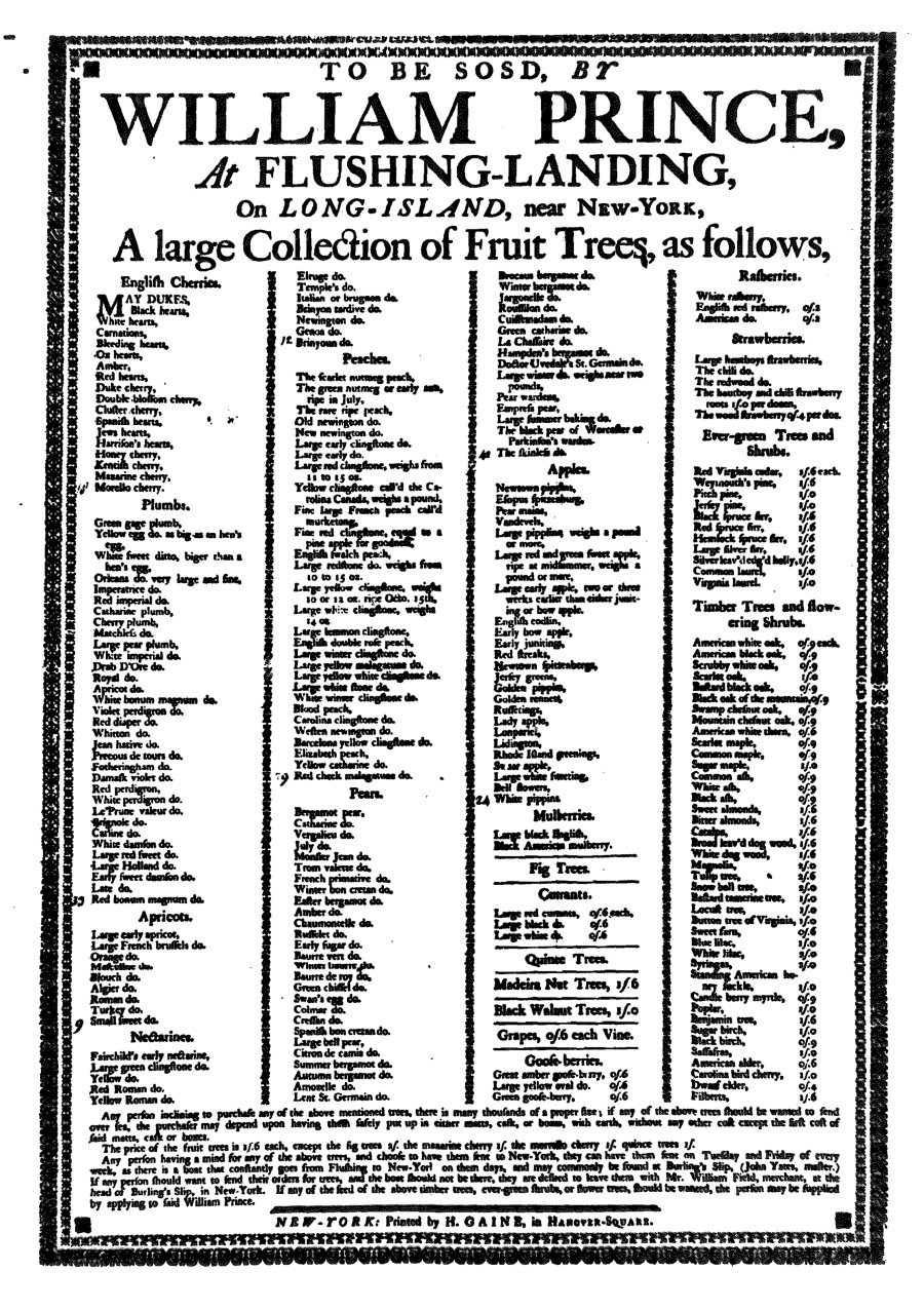 The Earliest American Garden Catalogs Were Simple Broadsheets, Single Page  Flyers Of Plant Names And Little Else. Although Some Were Mailed, ...