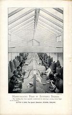 1895.002-026.jpg