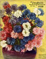 1938.052-cover.jpg