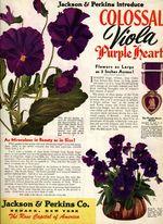 1945.002-backcover.jpg