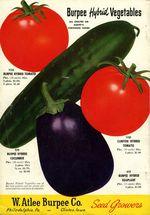 1947.030-backcover.jpg