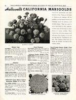1948.021-016.jpg