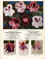 1948.021-backcover.jpg