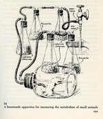 q162.s7-metabolismapparatus-02-900w.jpg
