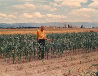 Art King monitoring experiments in a corn field near the Halsey paper mill in Linn County, Oregon, July 1972.