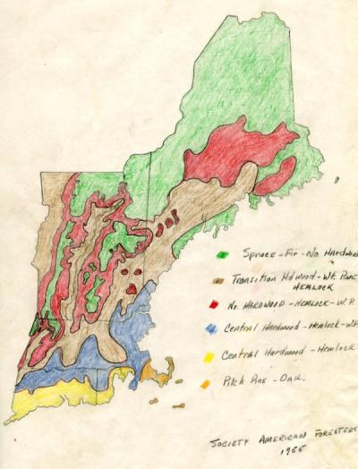 A map of the forests of New England, created by the Society of American Foresters, ca. 1955.